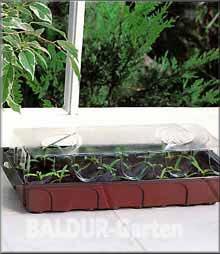 gew chshaus f r die fensterbank pflanzen z chten auf der fensterbank. Black Bedroom Furniture Sets. Home Design Ideas